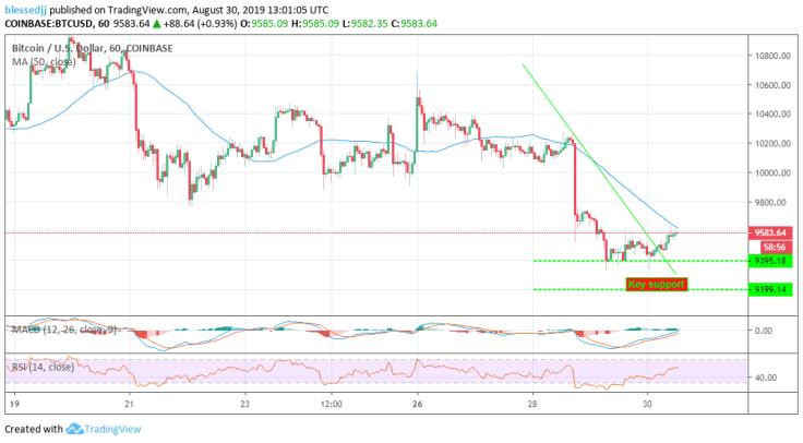 aug-bch-price-prediction-btc